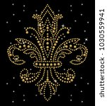 Rhinestone Applique Print For...