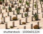 el alamein  egypt   march 23 ...   Shutterstock . vector #1030601224