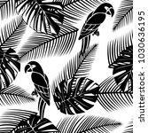 black and white seamless... | Shutterstock .eps vector #1030636195