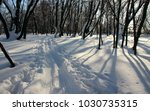 the beaten track by skis in the ...   Shutterstock . vector #1030735315