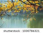 zhongshan botanical garden | Shutterstock . vector #1030786321