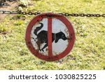 sign dog prohibition  | Shutterstock . vector #1030825225