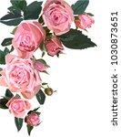 floral design illustration.... | Shutterstock .eps vector #1030873651