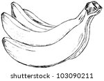 Banana on a white background - stock vector