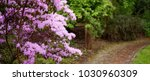 a traditional english cotswold... | Shutterstock . vector #1030960309