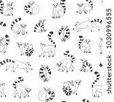 lemur animal funny vector... | Shutterstock .eps vector #1030996555