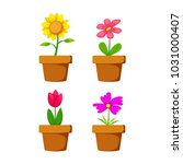 Set Home Flower In Pot Vector...