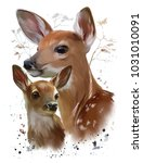 wild life  sika deer watercolor ... | Shutterstock . vector #1031010091