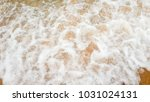 beautiful beach and sea on... | Shutterstock . vector #1031024131