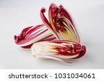 radicchio treviso on gradient... | Shutterstock . vector #1031034061