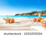 sand of free space and shell  | Shutterstock . vector #1031055034