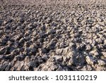 arable land background and... | Shutterstock . vector #1031110219