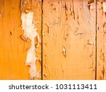 the wooden background and... | Shutterstock . vector #1031113411