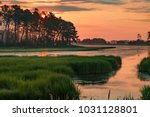 sunset in the marshes of... | Shutterstock . vector #1031128801