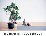 a little 'zen corner' in a yoga ... | Shutterstock . vector #1031158324