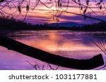 Sacremento River sunset through the peep hole of a tree.