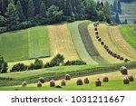 landscape of foothills of... | Shutterstock . vector #1031211667