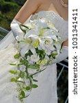 bridal image  splendid and... | Shutterstock . vector #1031341411