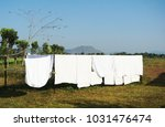 Stock photo fresh clean white bed sheet towel and clothes hanging on the line on sunny day natural 1031476474