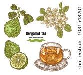 bergamot fruits  flowers ... | Shutterstock .eps vector #1031548201