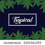 trendy summer tropical leaves...   Shutterstock .eps vector #1031561395