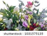 bouquet of lilac  violet ... | Shutterstock . vector #1031575135