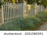 gray rural fence with tall... | Shutterstock . vector #1031580391