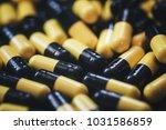 pills in capsules | Shutterstock . vector #1031586859