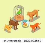 pet shop isometric background... | Shutterstock .eps vector #1031603569