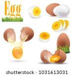 egg  set of white realistic...   Shutterstock .eps vector #1031613031