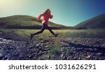 sports fitness woman trail... | Shutterstock . vector #1031626291
