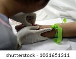 hand of nurse put intravenous...   Shutterstock . vector #1031651311