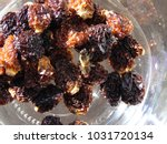 A Bee On Dried Vine Fruit