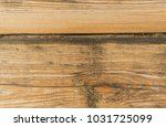 wooden panel with cracked... | Shutterstock . vector #1031725099