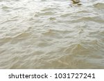 close up texture of water | Shutterstock . vector #1031727241