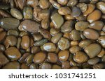 river stones background | Shutterstock . vector #1031741251