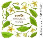 vanilla elements set | Shutterstock .eps vector #1031775421