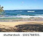 hawaiian landscapes  kauai ...   Shutterstock . vector #1031788501