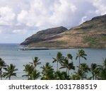 hawaiian landscapes  kauai ...   Shutterstock . vector #1031788519