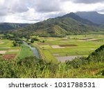 hawaiian landscapes  kauai ...   Shutterstock . vector #1031788531
