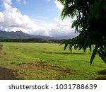 hawaiian landscapes  kauai ...   Shutterstock . vector #1031788639