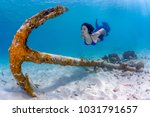 beautiful freediving girl... | Shutterstock . vector #1031791657
