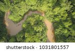 peruvian amazon from above .... | Shutterstock . vector #1031801557