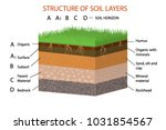 structure of soil layers... | Shutterstock .eps vector #1031854567
