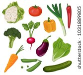 vegetables set hand draw vector | Shutterstock .eps vector #1031889805
