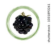 fruit of ripe blackberry | Shutterstock .eps vector #1031893261