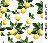 seamless citrus pattern.hand... | Shutterstock .eps vector #1031897191