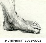 hand drawing picture   foot  ... | Shutterstock . vector #103193021