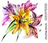 watercolor wild exotic tropical ... | Shutterstock . vector #1031970535
