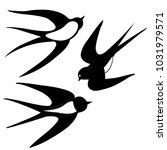 vector swallow birds | Shutterstock .eps vector #1031979571